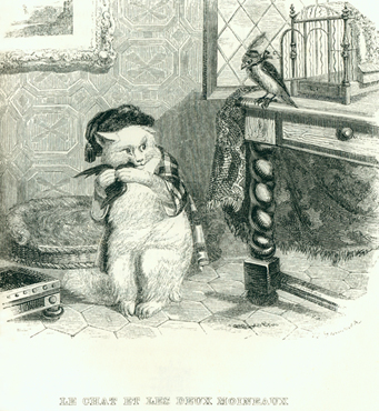 J. J. Grandville, The cat and two minah birds