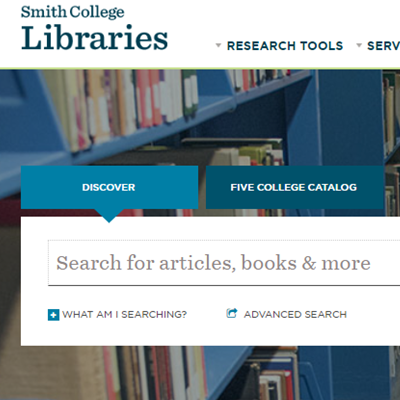 Discover search box on libraries' homepage