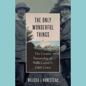 "cover of ""The Only Wonderful Things"" book"