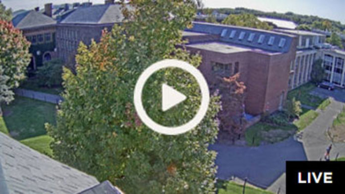 Live webcam of Neilson Library North