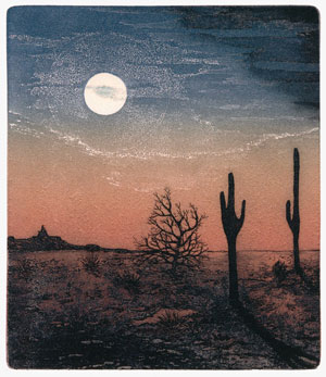 book cover Shirley Jones' image of the Arizona landscape created after her first trip to the U.S. in 1983