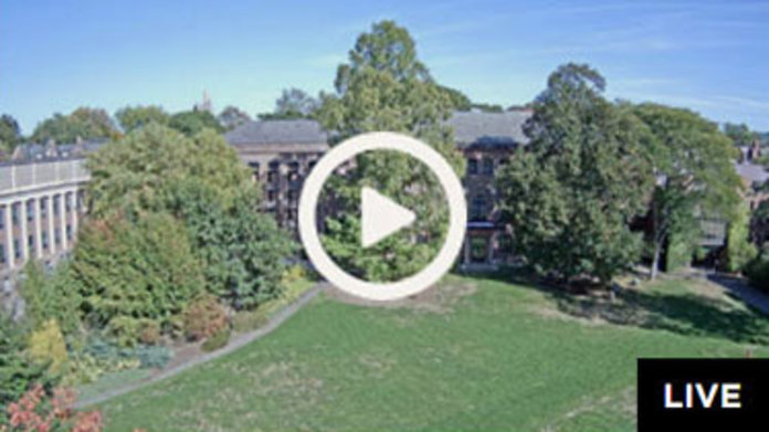 Live Webcam: Burton Lawn