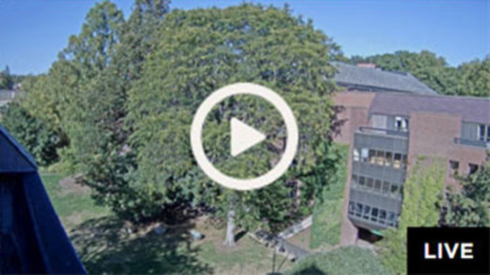 Live Webcam: Neilson Library South